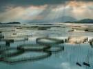 霞浦滩涂摄影向导 霞浦旅游摄影