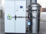 北京-天津-保定自来水臭氧发生器价格