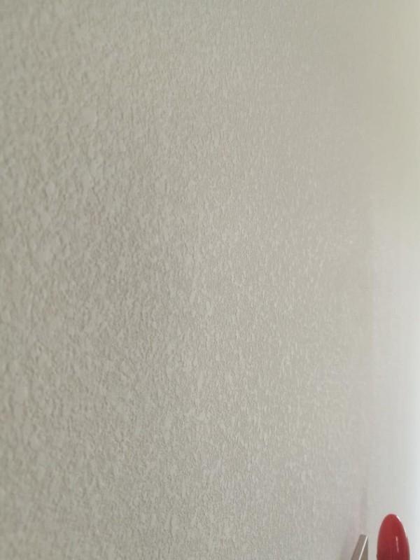 湛江墙面装修,去甲醛生态贝壳粉涂料