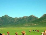 大连到内蒙古旅游_周末内蒙古纯玩双卧4日