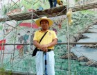 帝象堂墙绘壁画