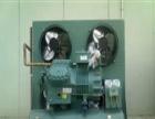 辽宁朝阳朝阳县制冷设备回收-朝阳县制冷设备回收