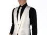 2012夏装男装批发 英伦绅士修身西装马甲 表演结婚礼服白色马夹