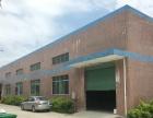 惠阳淡水白云坑市场附近一楼1600平钢构出租