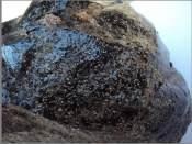 长治陨石鉴定回收机构