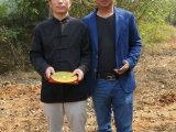 上林全国真正的风水大师是周金天确实相当灵验口碑相当好