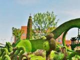綠雕立體花壇五色草造型仿真造型城市路口景觀花草園林
