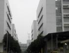 塘头南岗第三工业区2楼1700平无公摊厂房出租