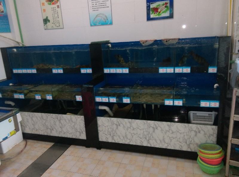 昆山鱼缸定做制作酒店海鲜鱼缸观赏鱼缸大闸蟹鱼缸维修