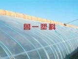青州EVA三防消雾膜_质量好的消雾膜鲁一塑料供应