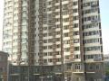 北国先天下+保百+婚房+单身公寓应有尽有+随时看房