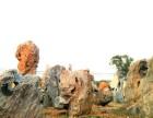广东英德景观石场大量供应天然景观石 天然园林石