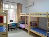 房東直租紫荊山城南路西南角溫馨床位電梯房交通方便