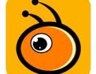 蚂蚁之旅-西北领先的自由行服务平台