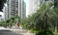 春晖花园 步行街商圈 拎包入住 3室2厅 65.8万!