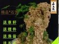 可种植花草的吸水石