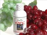 批发Daily法国红葡萄籽片每瓶含100mg葡萄籽提取物99%高