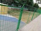 天津体育场围网 篮球场足球场围网