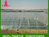山东燕塔批发 农用PO高保温薄膜 大棚PO塑料薄膜 品质保证