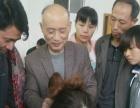 湖南省张家界哪有学习中医针灸的短期针灸培训班