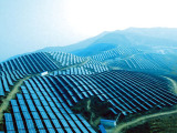 放心的太阳能分布式电站,西安太阳能分布式电站专业承接