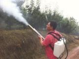 冲动力弥雾机 园林绿化水雾机 大棚专用脉冲式弥雾机型号