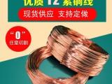 农大供应C1100紫铜丝 导电专用紫铜丝 厂价直销