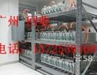 广东江门公司报废旧铅酸蓄电池收购价格