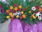 深圳市内绿植租摆,花卉盆栽零售,绿化工程苗木种植