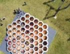 襄阳鲸鱼岛气模出租 蜂窝迷宫设备租赁 科技展设备