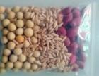 低温烘焙现磨熟黄豆五谷杂粮豆浆原料包熟豆子粗粮磨粉材料包组合