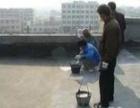 东凤化粪池清理 管道疏通 地毯清洗