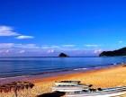 南澳 拓展 +沙滩烧烤+ 潜水 +快艇亲子 两日游