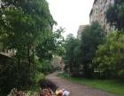 枋湖客运中心附近东晖广场 高档小区豪装1房仅租3000元