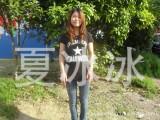 2013夏季 新款印花T恤圆领短袖 女款修身打底衫女装韩版批发