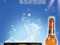 夜场啤酒加盟,啤酒批发,夜场啤酒代理