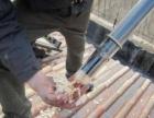 专业团队 服务全惠州 高效清洗饮水机 热水器太阳能