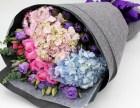 珠海鲜花店展会展览用花绿植盆栽配送鲜花速递