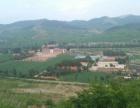 山120亩,土地30亩,鸡场,牛场,猪场。