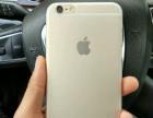 国行苹果6p低价出售