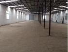 东湖高新 富士康附近全新厂房 全钢架结构厂房1100平米出租