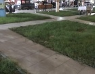 顺平 永平路 商业街卖场 700平米