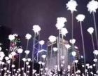 玫瑰花海租赁郁金香花海租赁出售制作厂家全国供应