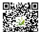 沂源鲁山国家森林公园、地质奇观九天石花洞一日游