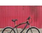 德国进口轻骑山地车,弯梁高碳钢材质。德国高精度彩漆。21速