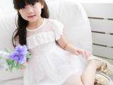 新品订货 2014新品韩版女童装品牌童裙女童公主裙儿童连衣裙