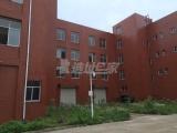 武汉阳逻经济开发区独栋框架厂房四层2413平米出售