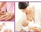广州芳村上门专业提供无痛催乳开奶乳房肿块奶少母婴护