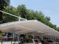 专注膜结构及异型钢结构的设计施工维护停车遮阳棚