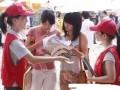 北京小时工临时工 专业发传单扫楼插车贴海报派遣服务